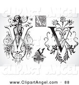 Illustration Vector of a Digital Collage of Black and White Letters; V on White by BestVector