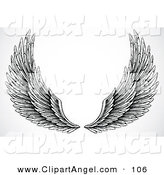 Illustration Vector of a Pair of Black and White Feathered Open Wings by BestVector