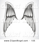 Illustration Vector of an Pair of Gray and White Elegant Angel Wings over Gray by BestVector
