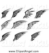 Illustration Vector of Black and White Tribal Angel Wings by Seamartini Graphics