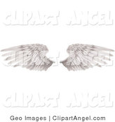 Illustration Vector of Two Large White Feathered Wings Spread Open, Isolated on Solid White by AtStockIllustration