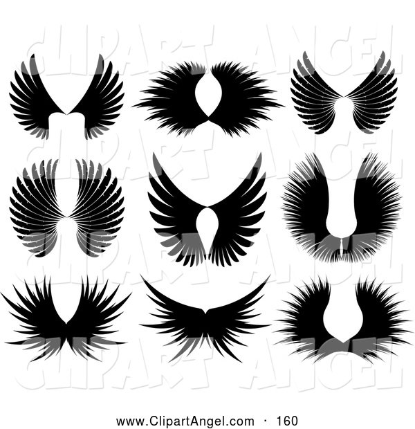 Illustration Vector of ADigital Set of Black Majestic Wing Silhouettes