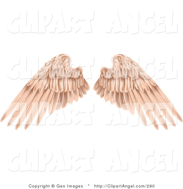 Illustration Vector of Flesh Colored Angel Wings on a White Background