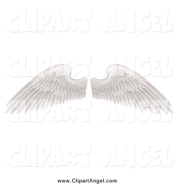 Illustration Vector of Spread White Wings