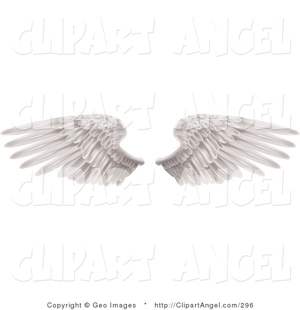 Illustration Vector of Two Large White Feathered Wings Spread Open, Isolated on Solid White